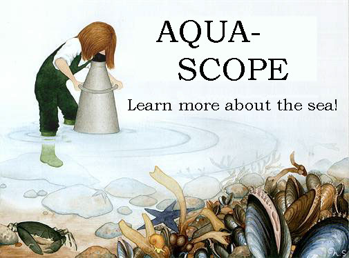 Welcome to Aquascope